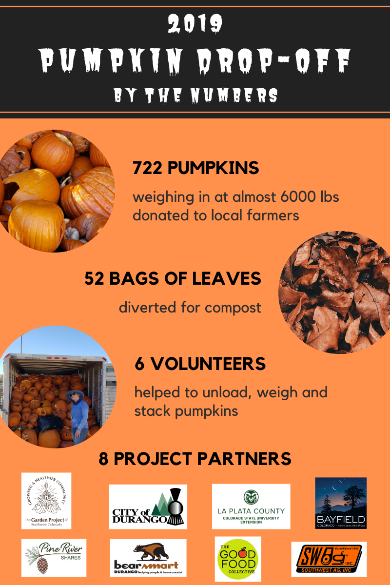 Pumpkin Drop-off Summary 2019